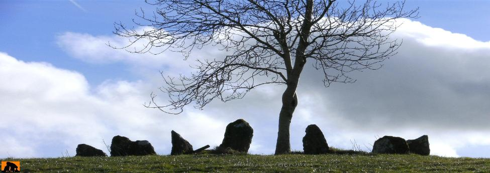 CARTRON SOUTH STONE CIRCLE, COUNTY GALWAY