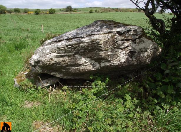 Caherkirky Boulder Burial, Co. Cork
