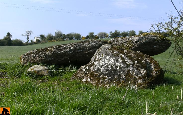 DERRYRAGH MEGALITHIC TOMB, COUNTY CAVAN