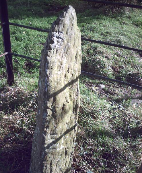 KILTERA OGHAM STONES, COUNTY WATERFORD