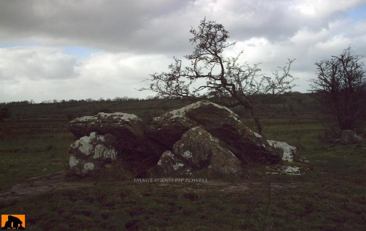 LOUGH SCUR PORTAL TOMB, COUNTY LEITRIM